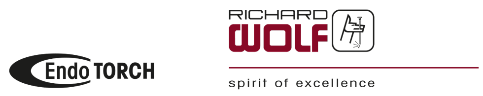 BI-wolf-endotorch-logo